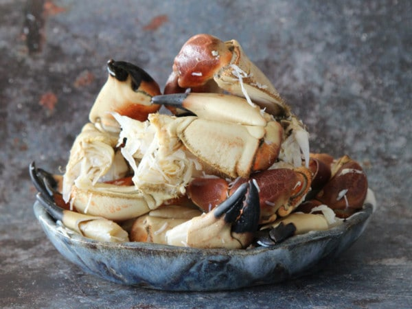 Cornish Whole Cooked Crab Claws | Order Online | Next Day Delivery